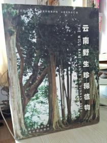 云南野生珍稀植物