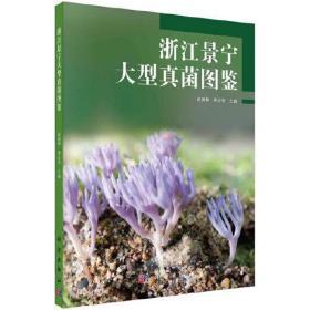 浙江景宁大型真菌图鉴