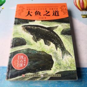 动物小说大王沈石溪·品藏书系:大鱼之道