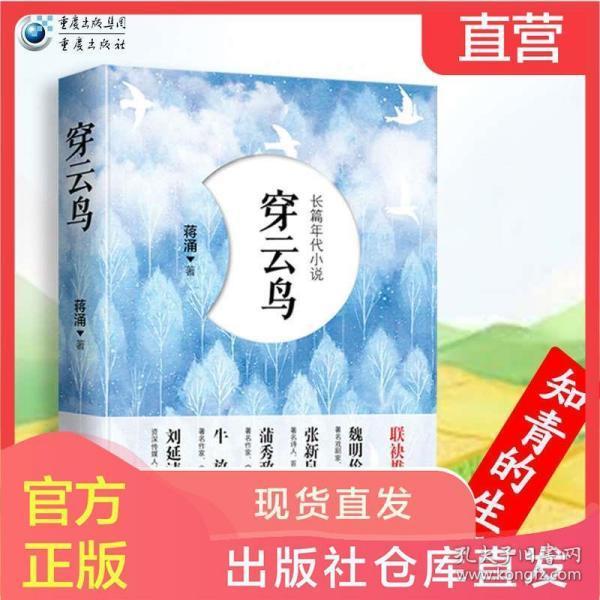 《穿云鸟》知青的生活青春无悔 蒋涌著 与《芳华》《蹉跎岁月》《今夜有暴风雪》比肩的知青题材的青春文学小说