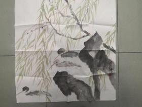 【三八特惠 保真包邮】河南美协会员 杨经纬 四尺斗方写意花鸟画
