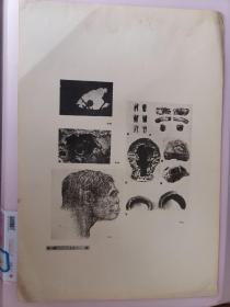 民国 珂罗版精印《中国历史参考图谱》第一辑(上古四)