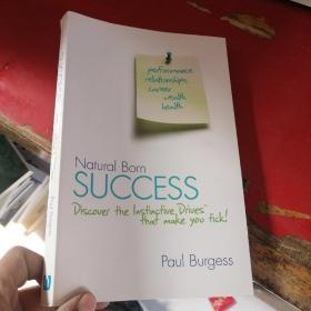 Natural Born Success: Discover the Instinctive Drives That Make You Tick!