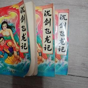 沉剑飞龙记1.2.3.册