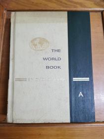 英文原版:THE WORLD  BOOK