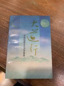 大道行:访孤独居士王力先生