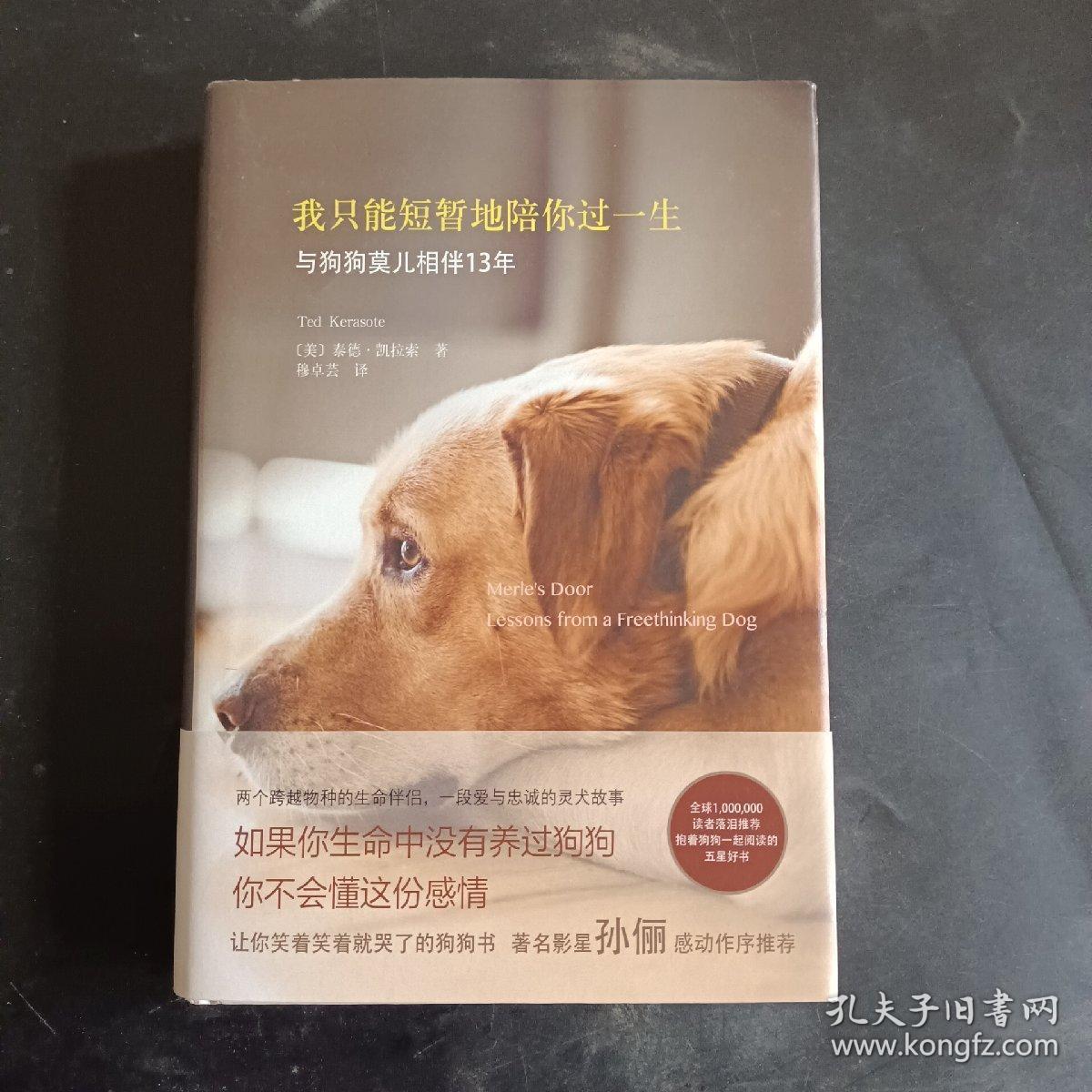 我只能短暂地陪你过一生:著名影星孙俪推荐: 两个跨越物种的生命伴侣 一段爱与忠诚的灵犬故事