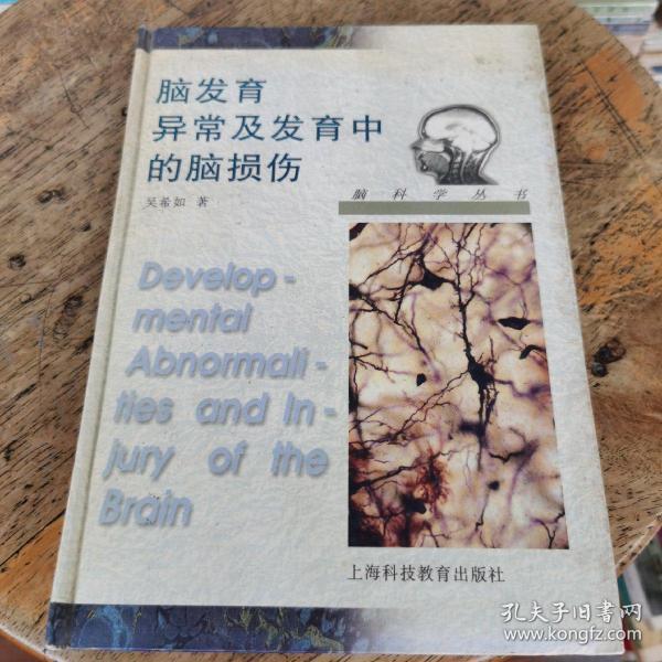 脑发育异常及发育中的脑损伤