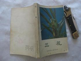 兰花(1984年一版一印)