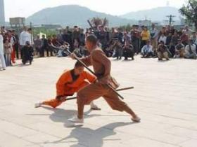 中华武藏 ---泉州少林寺五祖拳拳谱45张DVD