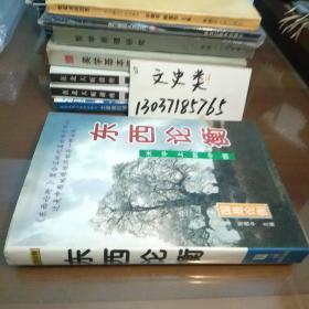 东西论衡:天平上的中国(包正版现货无写划)