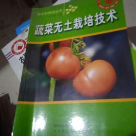 蔬菜无土栽培技术