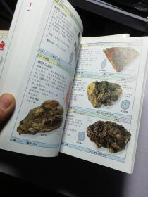 Dk 自然珍藏 图鉴丛书 18本合集