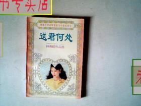 林燕妮作品选.送君何处.香港艺术家联盟最佳作家得主