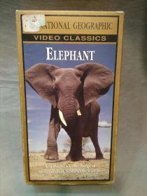 美国国家地理频道纪录片录像带:ELEPHANT(大象)