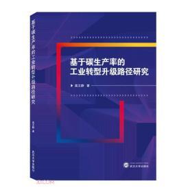 基于碳生产率的工业转型升级路径研究  高文静 著 武汉大学出版社 9787307214996