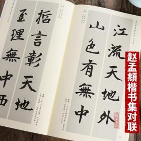 赵孟頫胆巴碑集字对联 毛笔楷书书法字帖