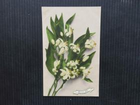 欧美风-手账复古集邮收藏彩色外国邮政明信片-花卉