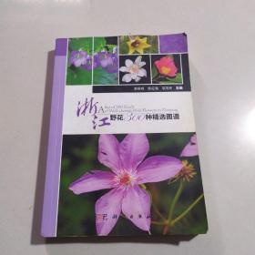 浙江野花300种精选图谱