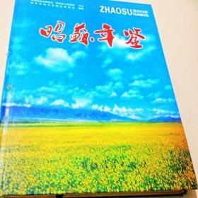 C200457 昭苏年鉴2009