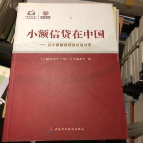 小额信贷在中国。以小额信贷促进社会公平