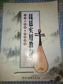 琵琶实用教程(带光盘)