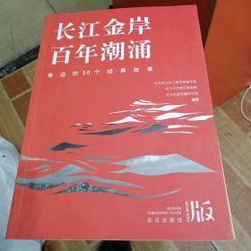 长江金岸百年潮涌