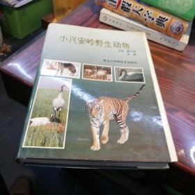 小兴安岭野生动物    黑龙江科学技术出版社16开精装本1995年一版一印仅印1000册