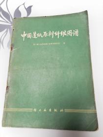 中国造纸原料纤维图谱