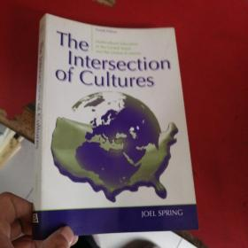 The lntersection of Cultures  简介的交集   英文版  第四版   扉页有少量笔记