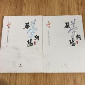 筑梦朝阳上下(全二册)
