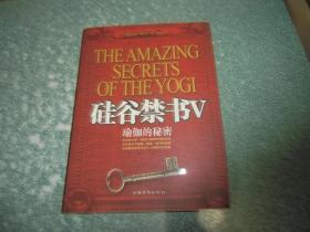 硅谷禁书V瑜伽的秘密