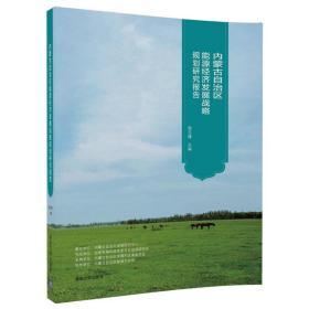 内蒙古自治区能源经济发展战略规划研究报告