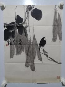 保真,四川著名画家秦天柱花鸟画一幅,尺寸55×40.5cm