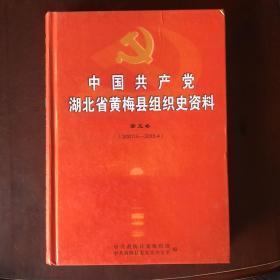 中国共产党湖北省黄梅县组织史资料(第五卷)(2007.5-2013.4)