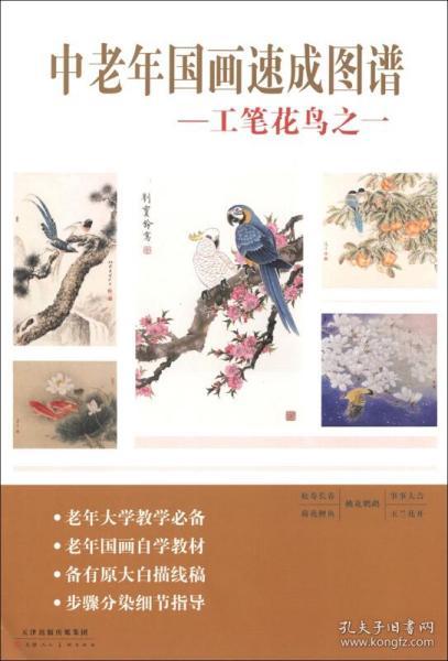 中老年国画速成图谱:工笔花鸟1