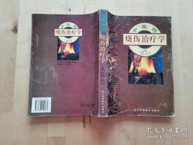 中医药 烧伤治疗学 丁宝财 辽宁科学技术出版社