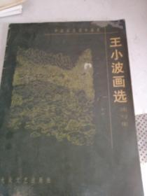 王小波����x  速��集
