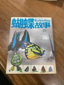 自然观察:蝴蝶故事