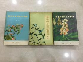 常用中草药彩色图谱【1-3】【三册都是:一版一印〕