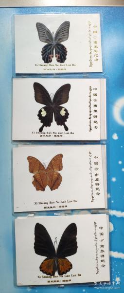 蝴蝶标本(中国云南旅游纪念.西双版纳.橄榄坝)