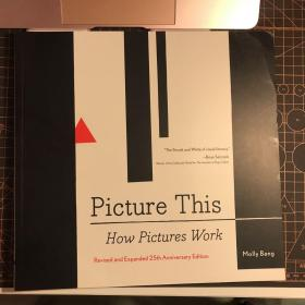 Picture this how pictures work