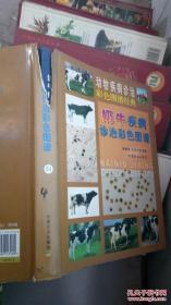 奶牛疾病诊治彩色图谱.动物疾病诊治彩色图谱经典