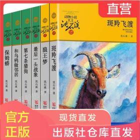 正版 沈石溪动物小说系列全套6册 第七条猎狗最后一头战象斑羚飞渡9-12-15周岁儿童文学故事书 三四五六七年级小学生课外阅读书籍