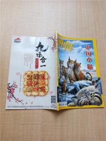 中国国家地理 博物 中国小猫 2018年第1期 总第169期/杂志.