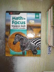 MATH IN FOCUS 5B 焦点数学5b
