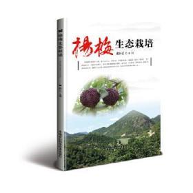 杨梅生态栽培