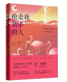 正版现货 抢走我名字的人;安·摩根 刘媛 译小说外国文学畅销书籍