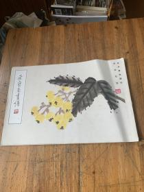 5528:荣宝斋画谱 花卉草虫部分 齐白石绘