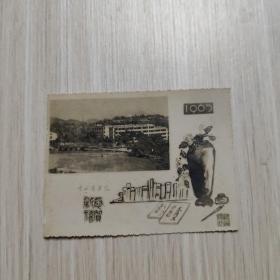 老照片:1965年-中山医学院-恭贺新禧-新年贺卡